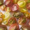 Capellini with White Wine Cherry Tomato Sauce